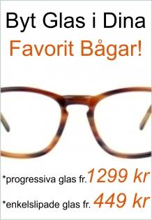 prova glasögon på nätet